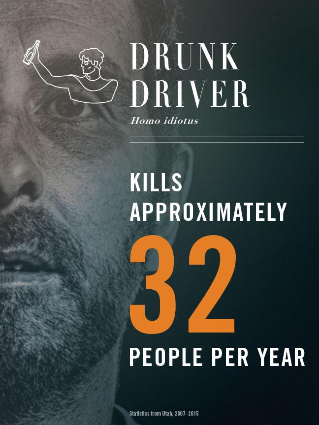 Drunk Driver - kills approximately 32 people per year