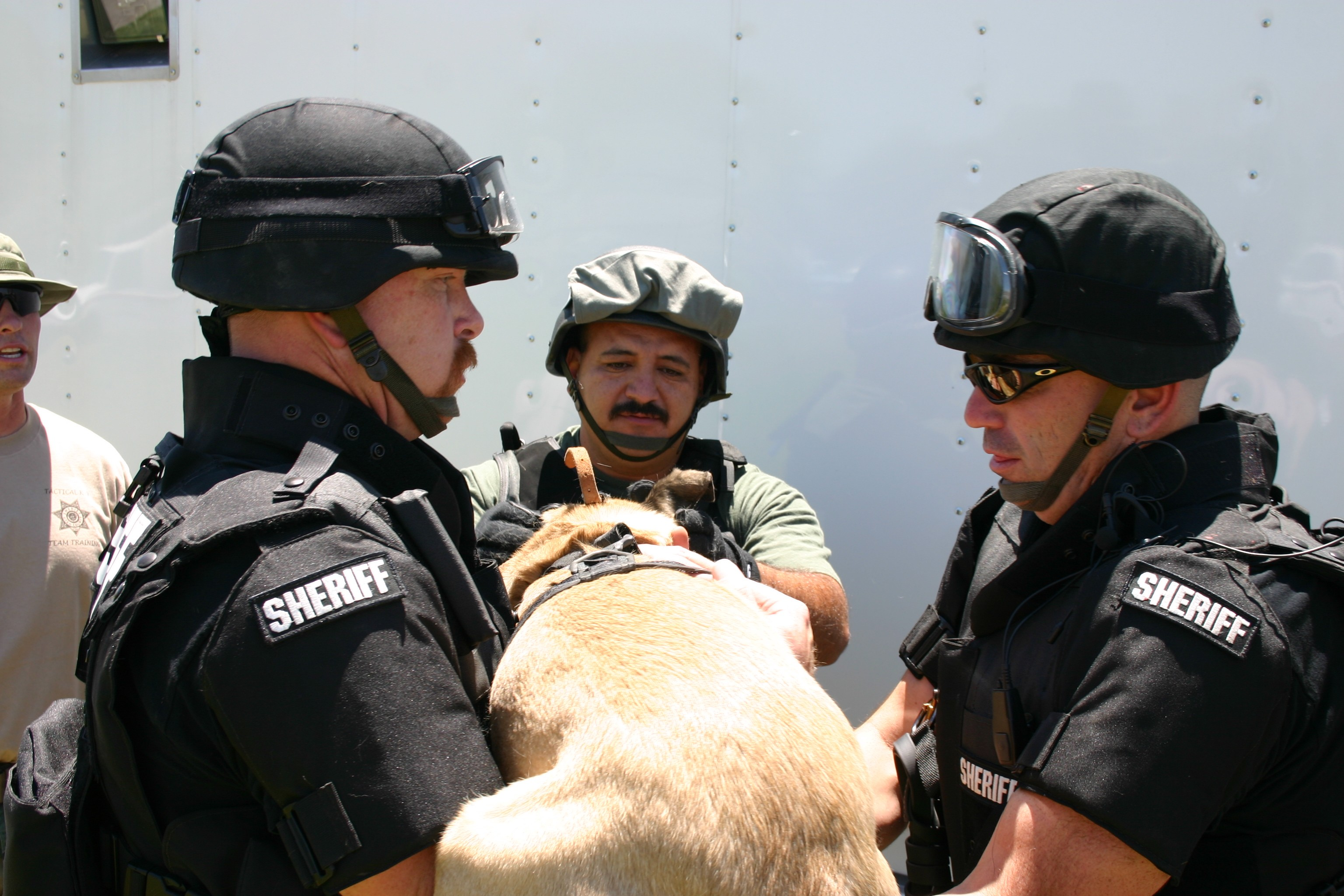 IMG_6630 edited swat website