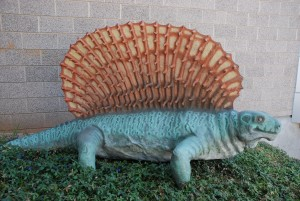 Edaphosaurus model in the museum gardens.