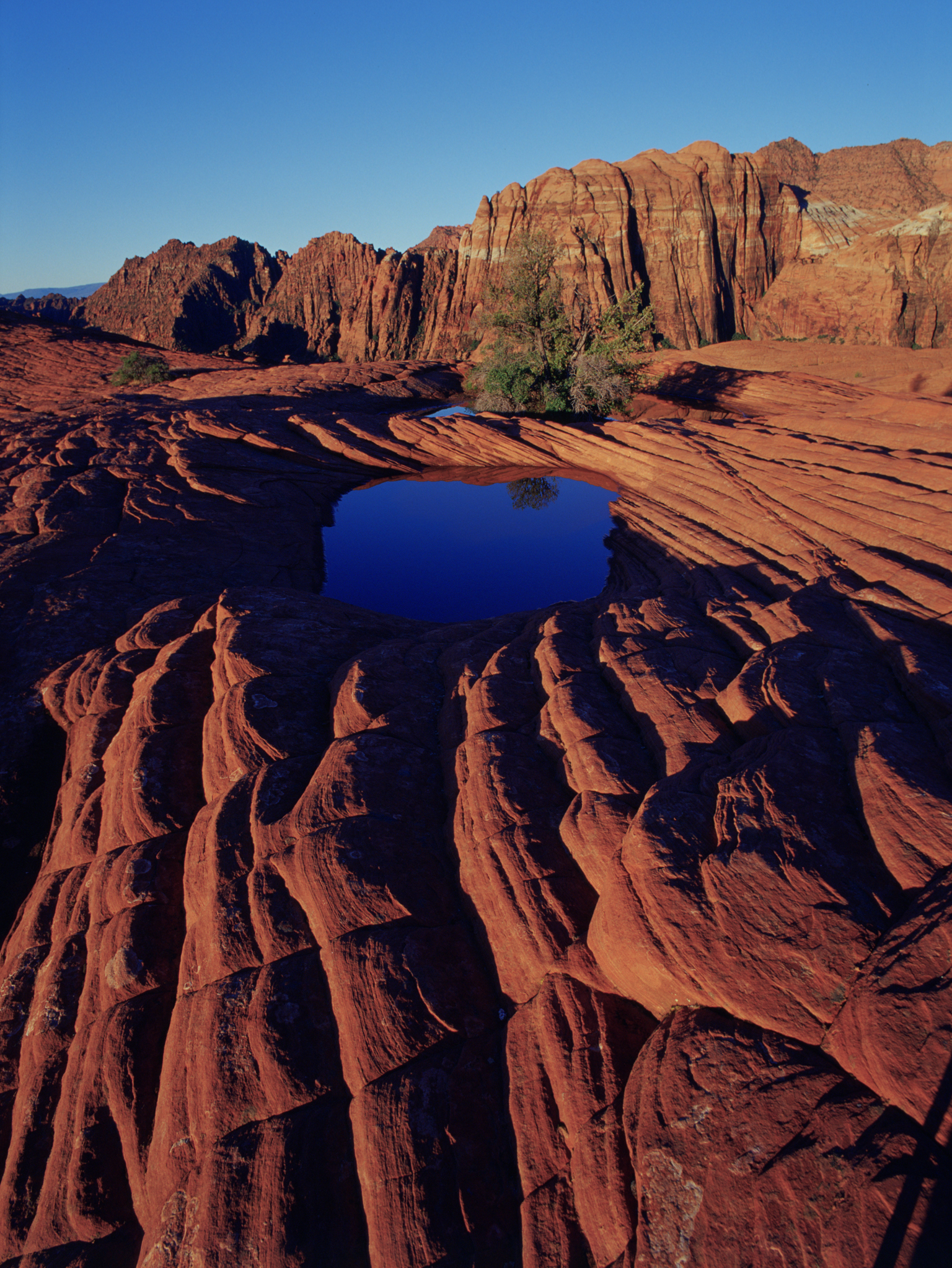 Petrified Sand Dunes and Lava Tubes at Snow Canyon State ...  |Snow Canyon State Park Utah